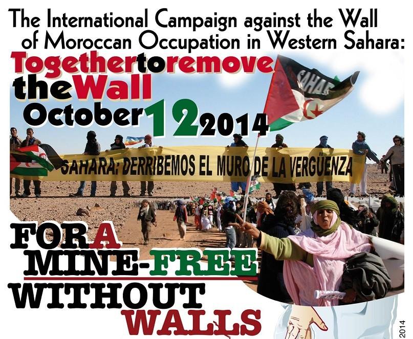 Viatge al Mur de la Vergonya (octubre 2014)